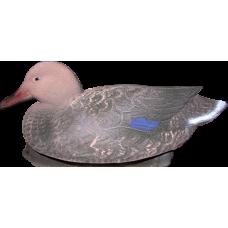 Чучело живое перо Кряква утка огруженный Чучела утиные<br>Чучело Кряква утка огруженный (ППУ) живое <br>перо<br>